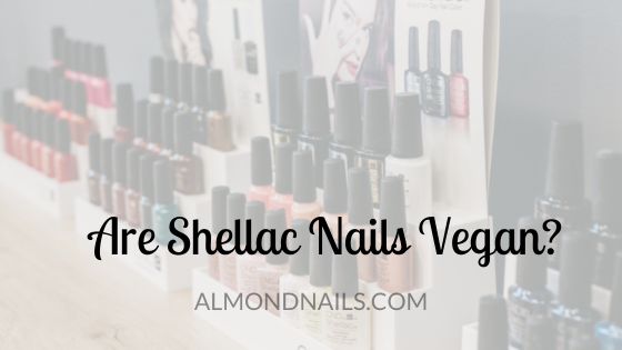 Are Shellac Nails Vegan? [What You Need To Know]